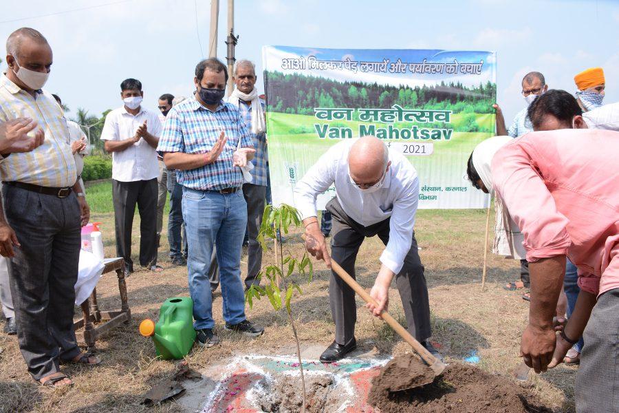 Organised Van Mahaotsav at ICAR-CSSRI Karnal on 16th July 2021
