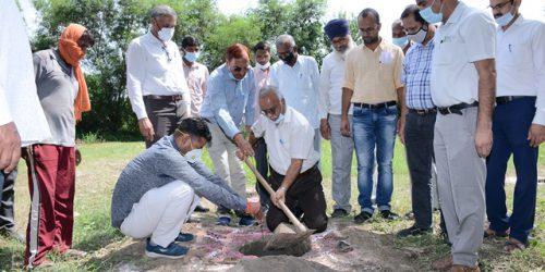 Organized Poshan Vatika Maha Abhiyan & Tree Plantation campaign at ICAR-CSSRI Karnal on 17th September 2021