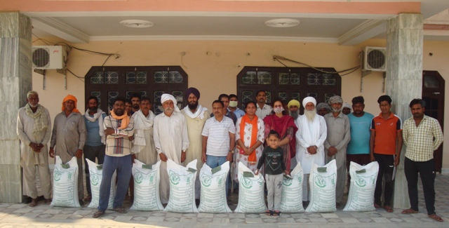 Seed distributed to farmers under SCSP and MGMG programme